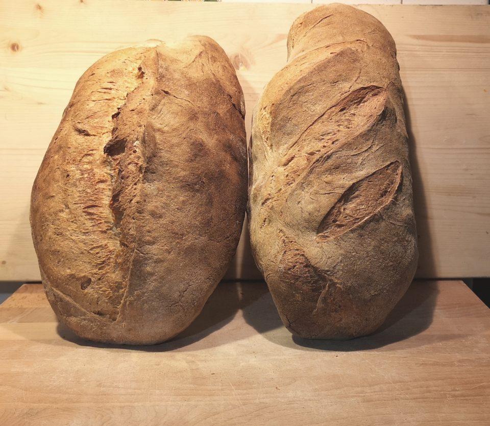 Come fare il pane aquilano
